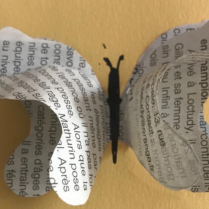 papillon livre